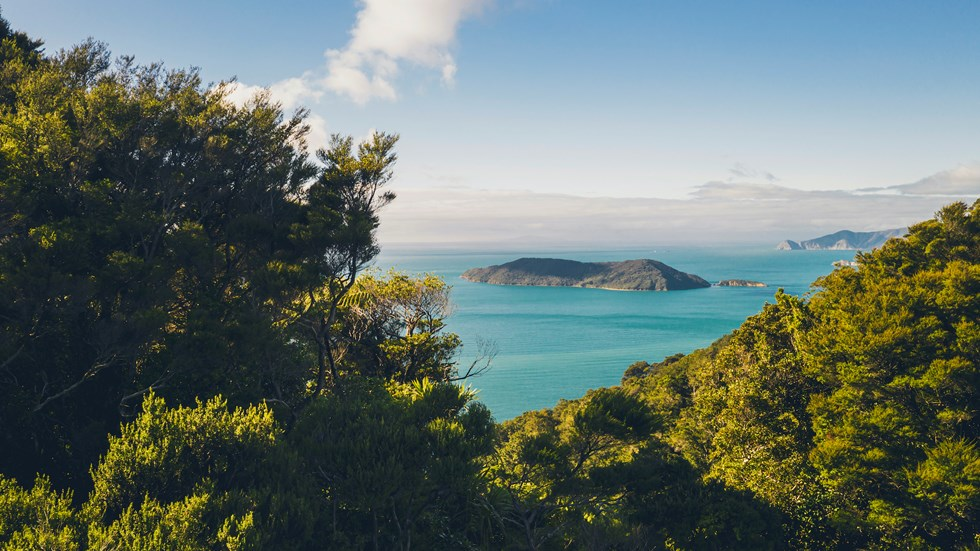 View north of Motuara Island from the hilltop Ship Cove/Resolution Bay lookout on the Queen Charlotte Track.